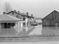 0325684 © Granger - Historical Picture ArchiveTENNESSEE: FLOOD, 1937.   A flooded street in North Memphis, Tennessee. Photograph by Edwin Locke, February 1937.