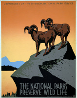 0621058 © Granger - Historical Picture ArchivePOSTER: NATIONAL PARKS.   Poster for the National Park Service, c1938.