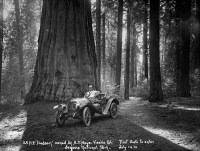 0621264 © Granger - Historical Picture ArchiveSEQUOIA NATIONAL PARK, 1910.   First automobile to enter Sequoia National Park in California, on Generals Highway. Photograph, 1910.
