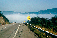 0186074 © Granger - Historical Picture ArchiveWEATHER: FOG.   Heavy fog along an American highway. Photograph, late 20th century.