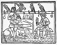 0090853 © Granger - Historical Picture ArchiveFALCONRY, c1250.   Jordanus Ruffus, blacksmith and stablemaster to Emperor Frederick II, caring for falcons. Woodcut from a 1502 edition of 'Libro de la natura di cavalli.'