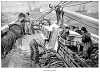 0077450 © Granger - Historical Picture ArchiveCOD FISHING, 1891.   Fishermen on the Grand Banks off the coast of Newfoundland preparing their catch. Wood engraving, American, 1891.