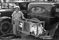 0121521 © Granger - Historical Picture ArchiveCHICKEN VENDOR, 1939.   A farm woman selling chickens at a farmer's market, Weatherford, Texas. Photograph by Russell Lee, May 1939.