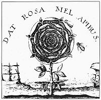 0092736 © Granger - Historical Picture ArchiveROSICRUCIANISM.   Rosicrucian symbol of the rose and cross. Line engraving from Robert Fludd's 'Summum Bonum,' 1629.