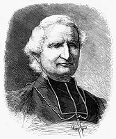 0265791 © Granger - Historical Picture ArchiveFELIX DUPANLOUP (1802-1878).   French ecclesiastic. Engraving, 1878.