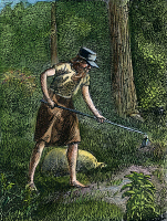 0008015 © Granger - Historical Picture ArchiveJOHN CHAPMAN (1775-1845),   known as 'Johnny Appleseed.' Colorized engraving, 1871.