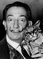 0325317 © Granger - Historical Picture ArchiveSALVADOR DALI (1904-1989).   Spanish painter. Photographed with his pet ocelot, Babou. Photograph by Roger Higgins, 1965.