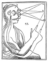 0015891 © Granger - Historical Picture ArchiveDESCARTES: PINEAL GLAND.   Woodcut from Rene Descartes 'Treatise of Man,' 1664, illustrating his theory that perceptions travel from the eyes to the pineal gland, which then allows 'humors' to pass to the muscles to produce response.