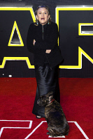 0621862 © Granger - Historical Picture ArchiveCARRIE FISHER (1956-2016).   American actress. At the London premiere of 'Star Wars: The Force Awakens' with her dog, Gary. Photograph by J. Spicer, 16 December 2015. Full Credit: ullstein bild - snapshot-photography / Future Image/J.Spicer / Granger, NYC. All Rights Reserved.