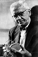 0018228 © Granger - Historical Picture ArchiveSIR ALEXANDER FLEMING  (1881-1955).   Scottish bacteriologist.
