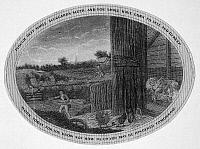 0003598 © Granger - Historical Picture ArchivePOOR RICHARD ILLUSTRATED.   Panel from an engraving, c1800, for Benjamin Franklin's 'Poor Richard Illustrated,' with the motto 'Plough Deep While Sluggards Sleep; and You Shall Have Corn to Sell and to Keep.'