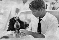 0168721 © Granger - Historical Picture ArchiveROBERT F. KENNEDY   (1925-1968). American lawyer and politician. Photographed with his spaniel, Freckles, while campaigning for U.S. president in Sacramento, Califonia, May 1968.