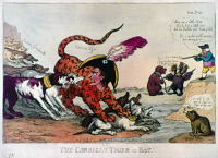 0021300 © Granger - Historical Picture ArchiveNAPOLEON BONAPARTE   (1769-1821). Emperor of France, 1804-1814. 'The Corsican Tiger at Bay.' English cartoon, 1808.