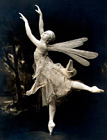 0060195 © Granger - Historical Picture ArchiveANNA PAVLOVA (1885-1931).   Russian dancer. photographed in 1916 in the role of 'Dragonfly.'