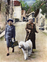 0053670 © Granger - Historical Picture ArchiveSTEIN AND TOKLAS, 1944.   American writer Gertrude Stein (1874-1946) in southeastern France with her companion, Alice B. Toklas (left), September 1944. Oil over a photograph.