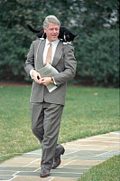 0621253 © Granger - Historical Picture ArchiveBILL CLINTON (1946-).  42nd President of the United States. With Clinton family cat Socks balanced on his shoulders. Photograph by Barbara Kinney, 7 March 1995.