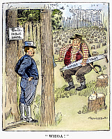 0089650 © Granger - Historical Picture ArchiveTHEODORE ROOSEVELT   (1858-1919). 26th President of the United States. American cartoon on President Roosevelt's order reserving the public timber and coal lands, c1906.