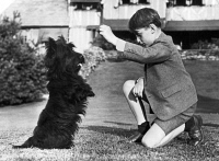 0108728 © Granger - Historical Picture ArchiveFALA & PRINCE, 1944.   Fala, President Franklin Delano Roosevelt's Scottish terrier, with Prince Harold of Norway on the White House lawn. Photographed 1944.