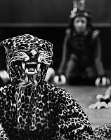0172621 © Granger - Historical Picture ArchiveMEXICAN FOLK DANCE, c1970.   Dancer dressed as a leopard in a scene by the Ballet Folklorico de Mexico de Amalia Hernandez, c1970.