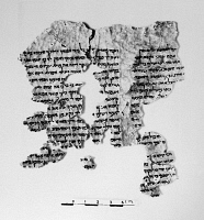 0171887 © Granger - Historical Picture ArchiveDEAD SEA SCROLLS.   Fragment from the Book of Samuel from the Dead Sea Scrolls, 1st-2nd century B.C.