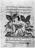 0122162 © Granger - Historical Picture ArchiveKALILA WA DIMNA.   The Story of the Unicorn, from the Arab version of the traditional Sanskrit collection of fables, Kalila wa Dimna, by 'abd Allah ibn al-Moqaffa, 1220-1230.