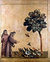 0024794 © Granger - Historical Picture ArchiveST. FRANCIS OF ASSISI   (1182-1226). Italian friar. St. Francis preaching to the birds. Predella panel from 'St. Francis receiving the stigmata,' by Giotto. Tempera on wood, c1300.