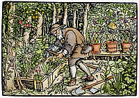 0085517 © Granger - Historical Picture ArchiveTHE GARDENER, 1550.   Woodcut, German, c1550.