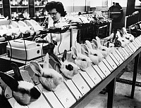 0114729 © Granger - Historical Picture ArchiveTESTS ON ANIMALS, 1957.   At the Squibb Institute for Medical Research in New Brunswick, New Jersey, rabbits are having their temperature taken over a period of two hours before being injected with a pharmaceutical product to be tested. Photograph, 1957.