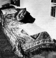 0038423 © Granger - Historical Picture ArchiveSIGMUND FREUD (1856-1939).   Austrian neurologist. Dr. Freud's celebrated couch, on which his patients would recline during psychoanalysis.