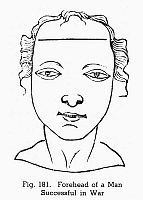 0097074 © Granger - Historical Picture ArchivePHYSIOGNOMY, 1658.   Forehead of a man successful in war. Woodcut, 1658, from Hieronymous Cardanus' 'Metoposcopia' (Paris).