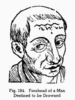 0097076 © Granger - Historical Picture ArchivePHYSIOGNOMY, 1648.   Forehead of a man destined to be drowned. Woodcut, 1648, from Philippus Phinella's 'Metoposcopia'.