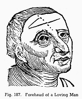 0097079 © Granger - Historical Picture ArchivePHYSIOGNOMY, 1648.   Forehead of a loving man. Woodcut, 1648, from Philippus Phinella's 'Metoposcopia'.