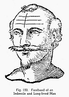 0097083 © Granger - Historical Picture ArchivePHYSIOGNOMY, 1637.   Forehead of an imbecile and long-lived man. Woodcut, 1637, from Ciro Spontini's 'Metoposcopia.'