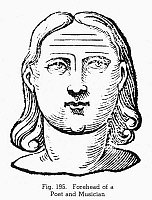 0097086 © Granger - Historical Picture ArchivePHYSIOGNOMY, 1637.   Forehead of a poet and musician. Woodcut, 1637, from Ciro Spontini's 'Metoposcopia.'