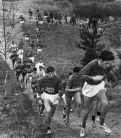 0259190 © Granger - Historical Picture ArchiveCROSS-COUNTRY RACE, 1967.   Runners in a university cross-country race in France. Photograph, March 1967.