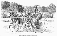 0101210 © Granger - Historical Picture ArchiveDUMAURIER: VELOCIPEDE.   'Happy Thougth.' An English mother's daydream. Drawing by George DuMaurier, 1890.