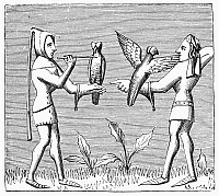 0101315 © Granger - Historical Picture ArchiveFALCONRY, 14th CENTURY.   'Falconers dressing their birds.' Wood engraving after a miniature in 'Livre du Roy Modus,' by Henri Ferrières, 14th century.