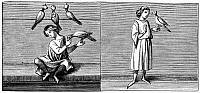 0101317 © Granger - Historical Picture ArchiveFALCONRY, 13th CENTURY.   Wood engraving after a 13th century miniature.