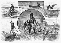 0264939 © Granger - Historical Picture ArchiveHUNTING: CRUELTY, 1880.   'Cruelties Practiced on Fish and Fowl.' Unsportsmanlike practices including overfishing, shooting ducks at too far a range, shooting pairs of ducks, and harpooning horseshoe crabs. Engraving, American, 1880.