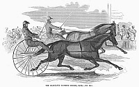 0097823 © Granger - Historical Picture ArchiveTROTTING HORSES, 1854.   The celebrated trotting horses Flora and Mac. Wood engraving, 1854.