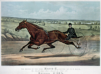0260591 © Granger - Historical Picture ArchiveHORSE RACING, 1880.   'The Queen of the Turf Maud S., Driven by W.W. Bair.' Lithograph by Currier & Ives, 1880.
