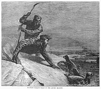 0096264 © Granger - Historical Picture ArchiveSEAL HUNTING, 1874.   Hunters killing seals in the Arctic regions. Wood engraving, American, 1874.