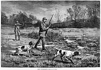 0264552 © Granger - Historical Picture ArchiveSNIPE HUNTERS, 1886.   'Spring Snipe-Shooting.' Engraving, American, 1886.