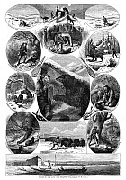 0264613 © Granger - Historical Picture ArchiveTRAPPER, 1868.   'Scenes in the Life of a Trapper,' hunting wolves, moose, buffalo, bears, beavers, otters and cougars. Engraving after drawings by W.M. Cary, American, 1868.