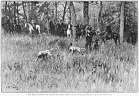 0264915 © Granger - Historical Picture ArchiveNORTH CAROLINA: HUNT, 1887.   Field trial of hunting dogs at High Point, North Carolina. Engraving after a photograph by James T. Walker, American, 1887.