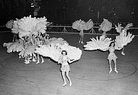 0170486 © Granger - Historical Picture ArchiveROLLER FOLLIES, 1942.   A performance by the Roller Follies at an American roller skating rink, 1942.
