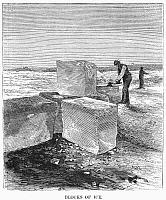 0097009 © Granger - Historical Picture ArchiveCUTTING ICE, 1870.   Blocks of ice for refrigertion, cut on a lake in Minnesota. Wood engraving, American, 1870.