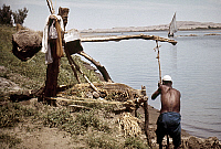 0131491 © Granger - Historical Picture ArchiveEGYPT: SHADOOF.   A man using a shadoof beside the Nile River near Edfu, Egypt. Photographed by Eliot Elisofon, 1965.