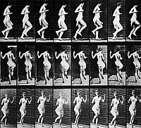 0040795 © Granger - Historical Picture ArchiveMUYBRIDGE: SEQUENCE, 1887.   'Figure Hopping.' Sequence of eight stages of movement photographed in 1887 by Eadweard Muybridge (1830-1904), American motion picture pioneer, using multiple cameras at three positions.