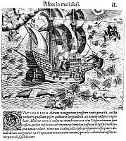 0163585 © Granger - Historical Picture ArchiveFLYING FISH, c1548.   Flying fish, attempting to escape predators, fall on the deck of a Portuguese ship in West Indian waters, 1547-48. Line engraving, 1592, by Theodor de Bry.